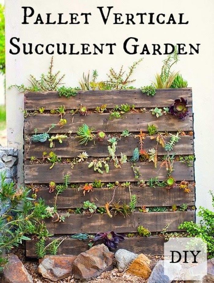 mur vegetal palette, décoration avec palette inspirationnelle, plusieurs plantes succulentes
