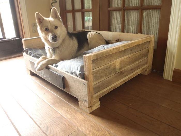fabriquer canapé palette pour chien et chiot et chiens