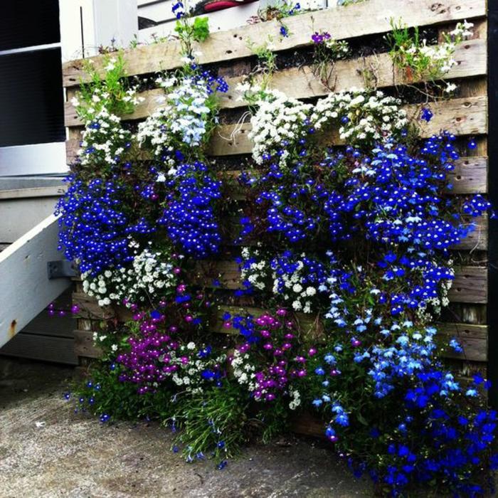 palette mur vegetal, belles fleurs épanouies fixées sur une palette