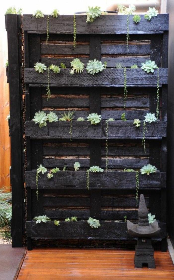 palette plante, palette peinte noire et petites plantes grasses