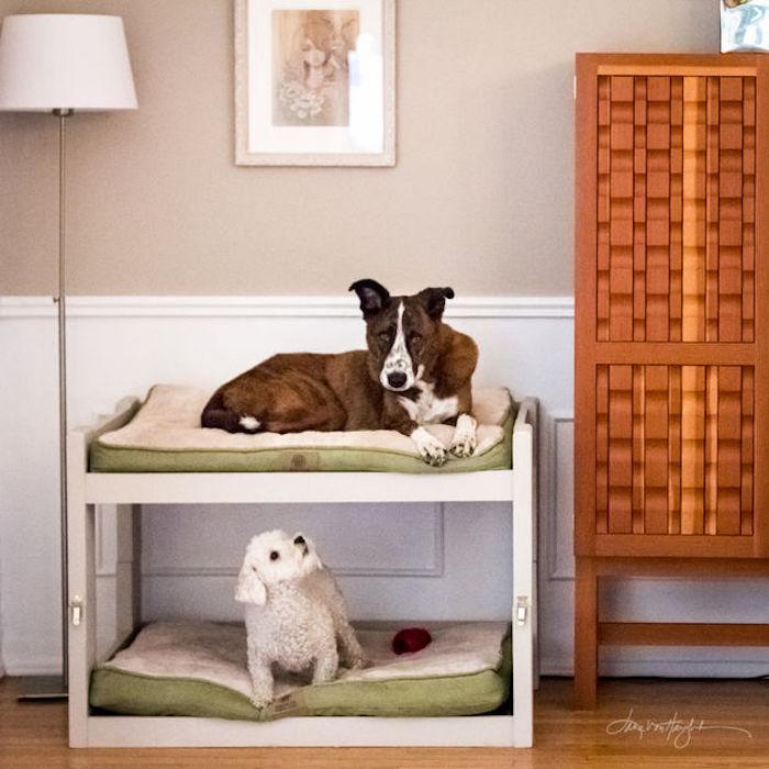 niche chiens couchage double étage lit chiot