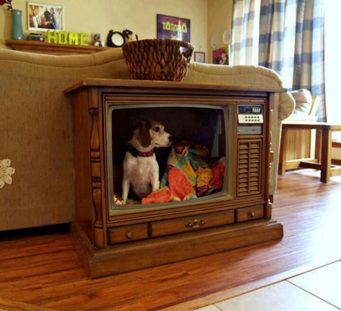 niche interieur chien petit ancienne tv petite maison chiot