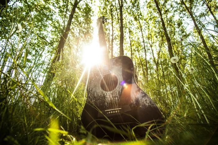activité a faire quand on s ennuie, apprendre le piano, tous les instruments de musique, nature verte, guitare noire