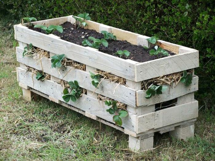 idée bricolage bac a fleur en palette pour planter des fraises, terreau et drainage, modèle de jardiniere classique