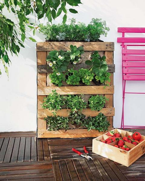 jardiniere en palette, mur vegetal adossé à un mur, repeint en blanc, plantes vertes, terrasse en teck naturelle