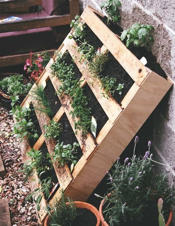 exemple de jardiniere en palette, mur vegetal adossé à un mur, plantes et terreau dans les interstices entre les planches