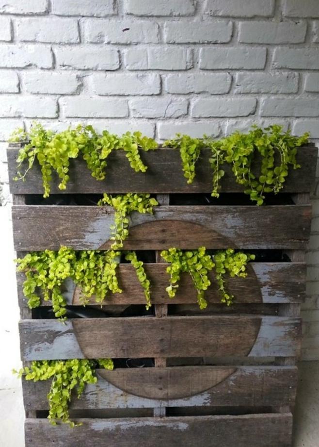 jardiniere en palette de bois adossé à un mur, des plantes plantées dans les interstices entre les palettes, deco murale exterieur