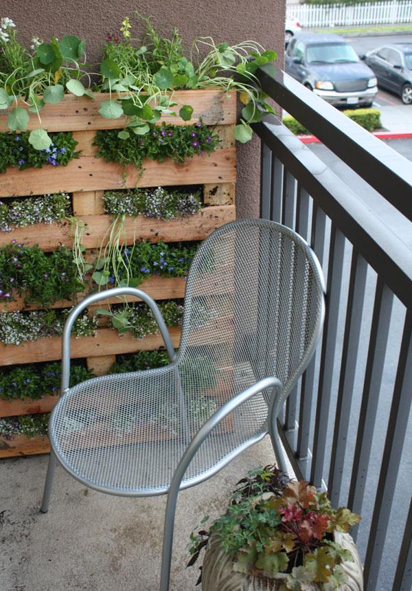 jardiniere palette, mur végétal, des plantes dans les interstices entre les lattes de bois, chaise en métal, terreau, fleurs