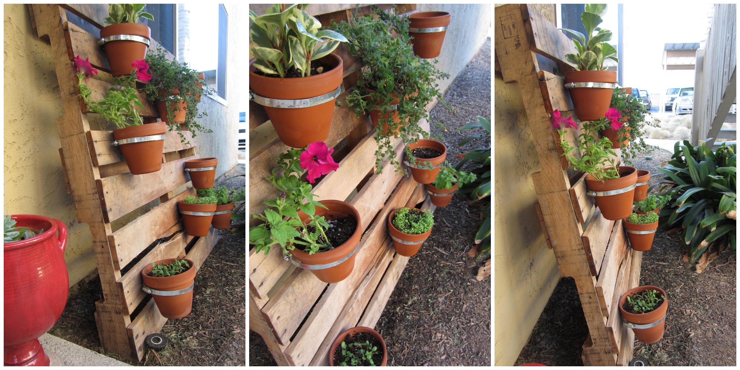 idée comment faire une jardiniere palette, des serre tuyaux fixées sur un mur en palette de bois, planches, planter des fleurs, pétunias