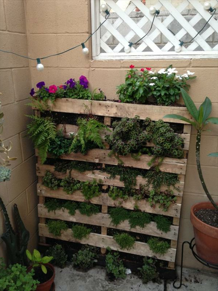 exemple de jardiniere en palette, mur vegetal contre un mur exterieur, des plantes vertes et fleurs colorées