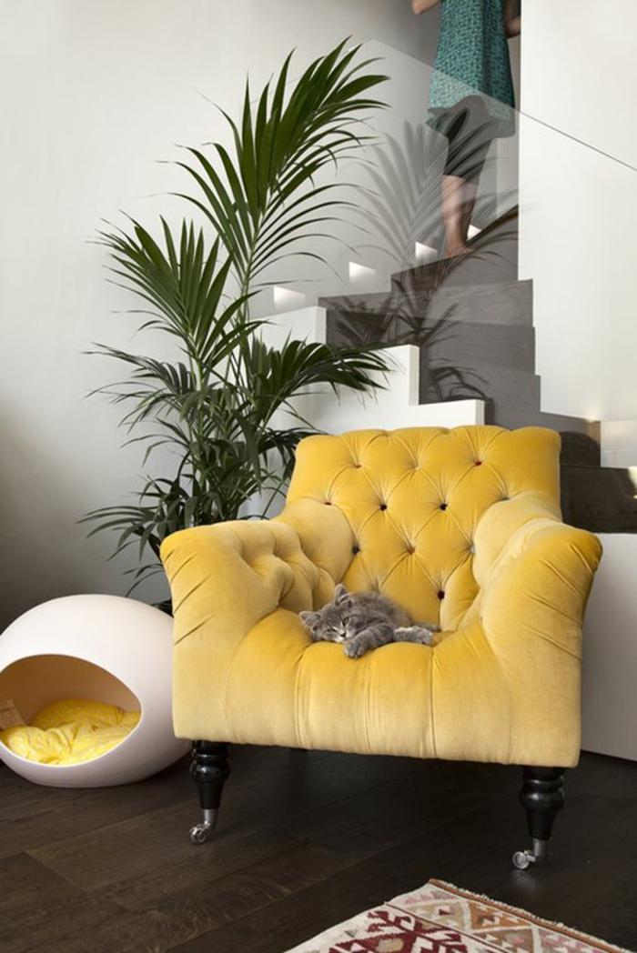 meuble baroc grand fauteuil jaune avec un chat gris dedans et une palme a coté