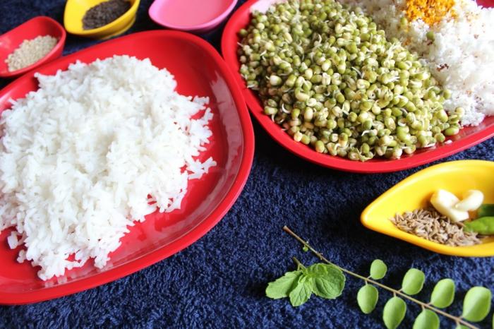 plat équilibré, riz blanc, ingrédients, herbes, recettes rapides et équilibrées, comment manger équilibré