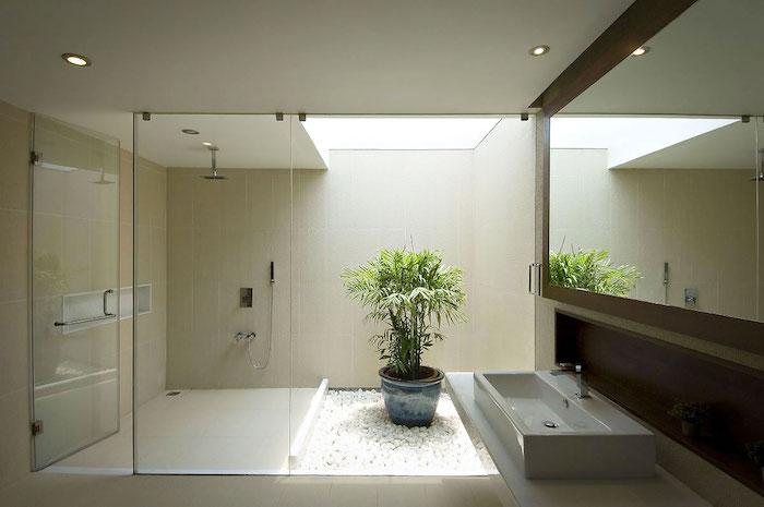 decoration salle de bain, ambiance zen, grand miroir rectangulaire, pot à fleur, jardin avec galets