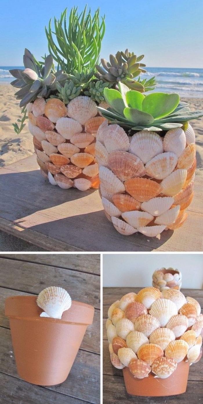 idée comemnt fabriquer un diy pot de fleur, decoration de coquillages, rangement plantes succulentes, deco bord de mer