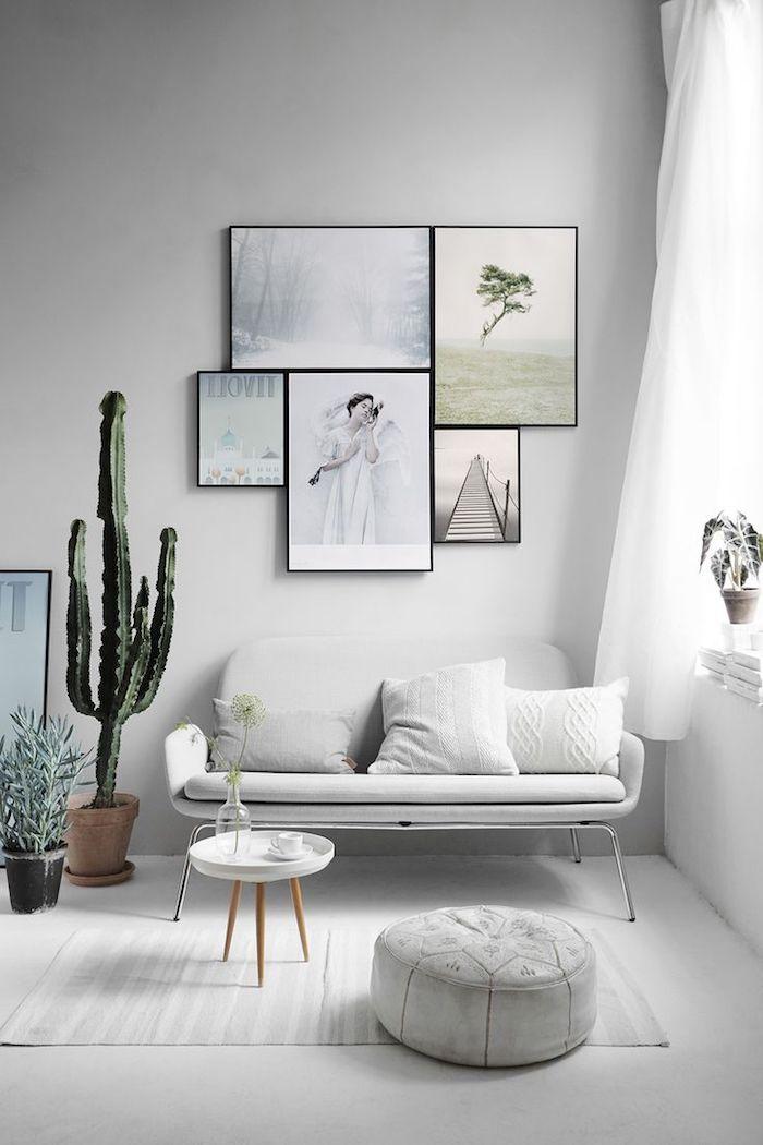 appartement scandinave, murs peints en gris, rideaux longs en blanc, cactus grand dans un pot terre cuite