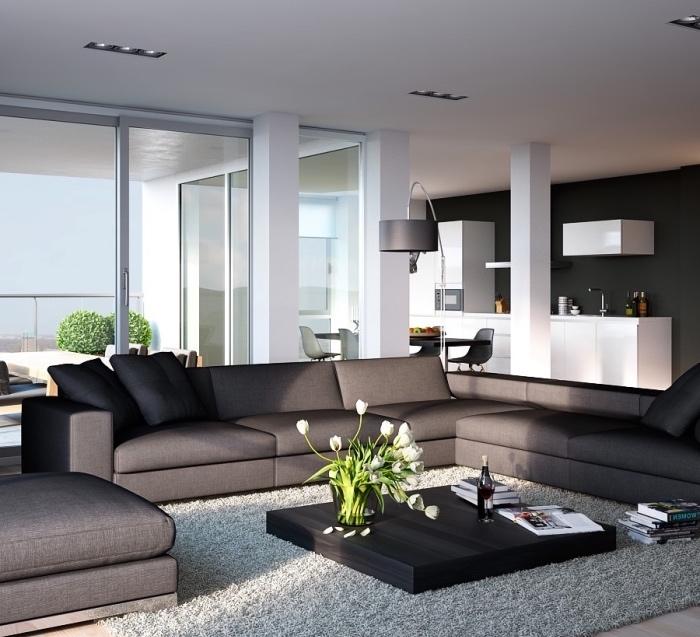 amenagement petite cuisine facade blanche sur le fond d un mur gris anthracite, canapé d angle gris et tapis gris, table basse noire