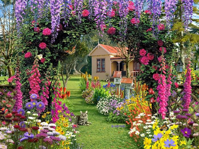 idee deco jardin, gazon et chemin avec une arche fleurie et parterre de fleur, un chat mignon, maison de campagne