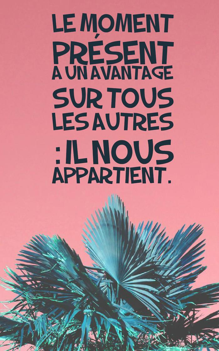proverbe sur la vie, papier peint de bureau, photo écran verrouillé iPhone en rose et motifs tropicales