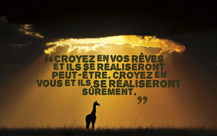 proverbes et citations, paysage naturel, coucher de soleil avec nuages grises et rayons, silhouette girafe sur herbe