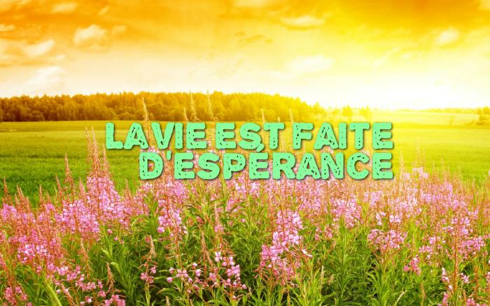 phrase sur la vie, paysage naturel en vert et jaune, champ avec herbe et fleurs rose, coucher de soleil et ciel en nuages blanches