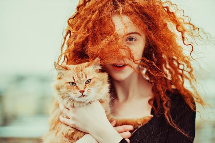 cheveux cuivré, chat animal de compagnie, blouse noire pour femme, cheveux frisés en couleur orange