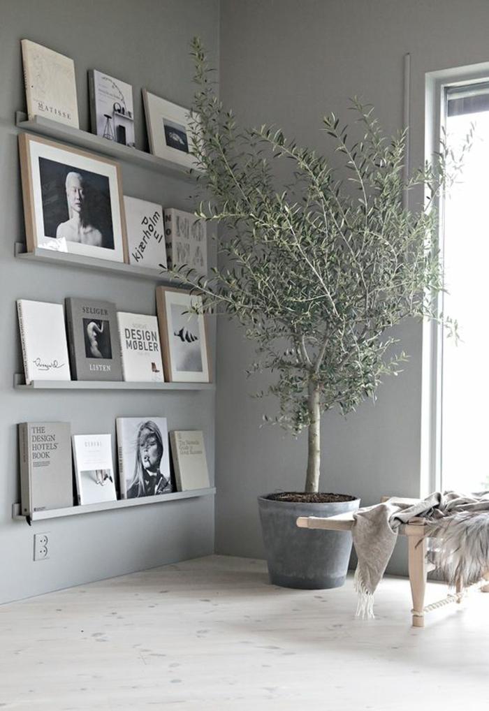 couleur gris perle dans le salon avec des étagères avec des livres et une grande plante verte