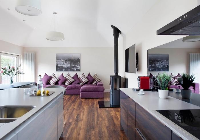 amenagement petite cuisine ouverte, parquet marron, deux ilots de cuisine, cheminée noire, coin salon avec canapé couleur pourpre, murs coleur gris clair et plafond blanc
