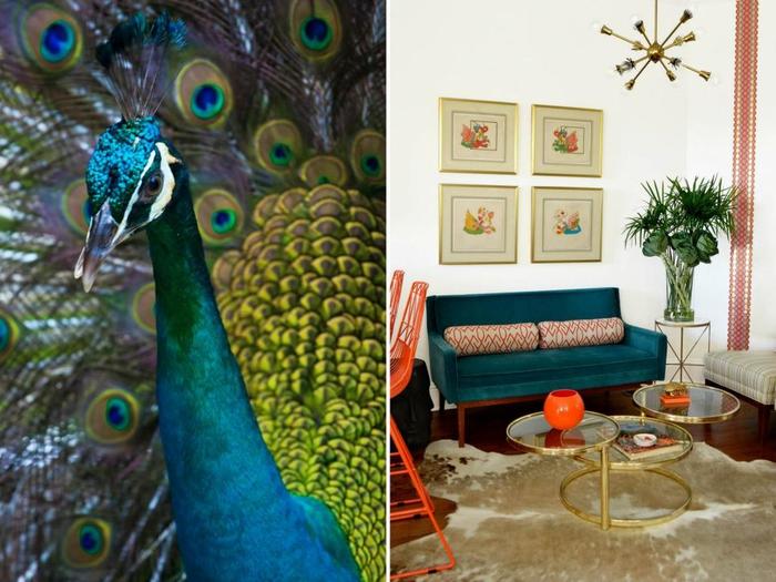comment adopter le bleu paon dans l'intérieur, canapé en velours couleur canard, au design rétro