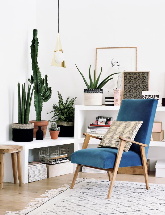 un coin de détende avec canapé couleur canard saturée, un salon style bohème chic aux tons neutres et déco en végétation