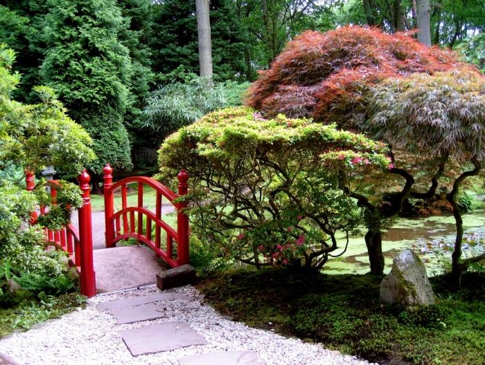 jardin zen japonais, gravier et chemin de pierres, pelouse et arbres bas, un pont rouge, des pins hauts