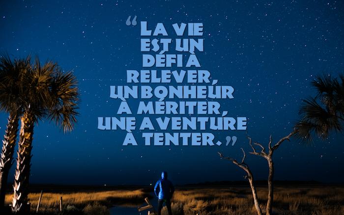 les plus belles citations, promenade dans la nature, ciel nocturne avec étoiles, palmiers et herbe jaune