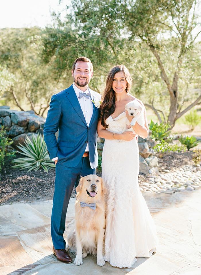 Mignonne robe de mariée trapèze robe de mariée sirene idée chiens