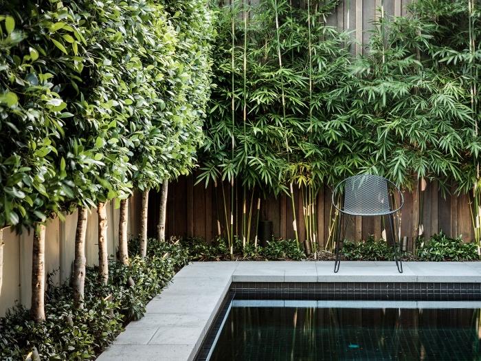 idée de génie jardin, piscine, clôture en bois, bambou, arbustes et plusieurs arbres comme cloison naturel