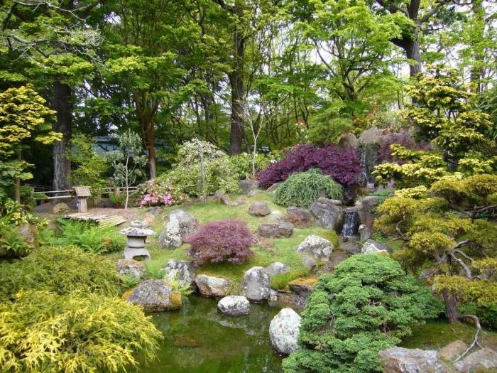 idée de petit étang, décoré de pierres, arbustes et arbres bas, déco de jardin zen qui imite la nature dans son état brut