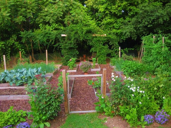 idée amenagement jardin potager surélevé, cultiver de différents légumes, cadre naturel en vert