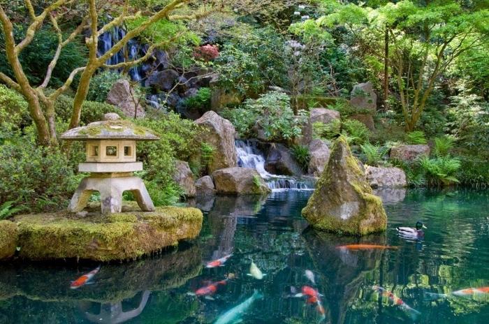 exemple de jardin zen, carpe koi, bassin d eau, étang avec chute d eau, lanterne en pierre, terrain en pente, pierres et vegetation verte