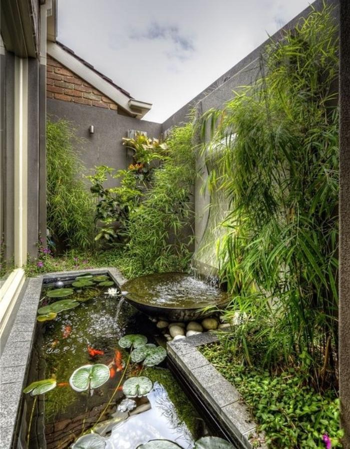 petite cour derrier maison, bassin carpe koi avec des carpes et des nénuphars, chute d eau et bambou vert