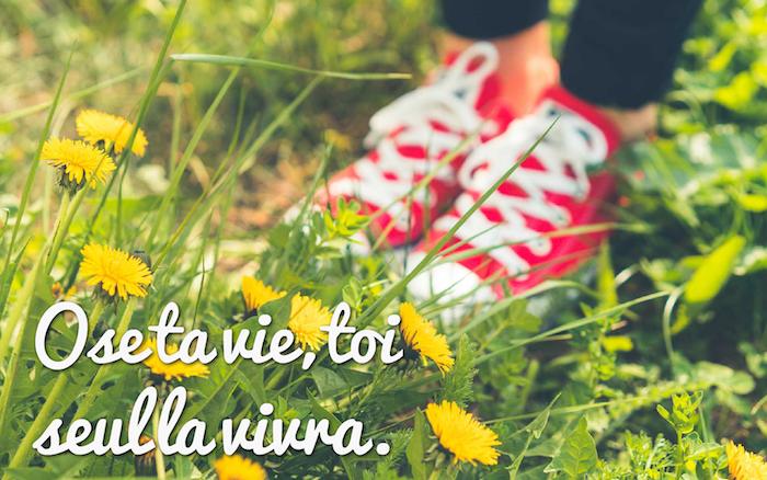 belle phrase sur la vie, photo de la nature avec herbe et fleurs jaune, baskets de toile en rouge avec lacets blancs