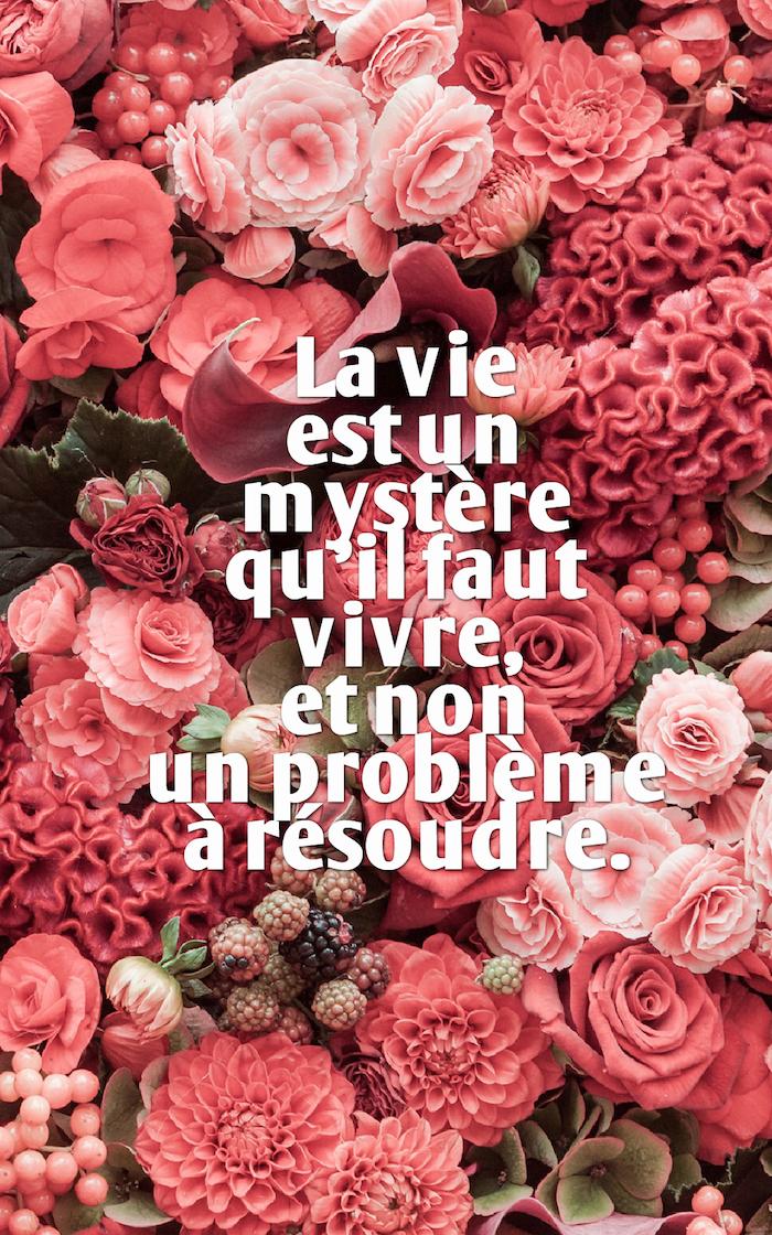 belle phrase, bouquet de fleurs rose et rouge, fond d'écran iphone avec citation sur la vie