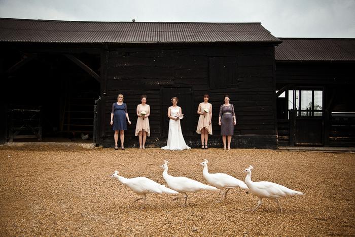 une séance photo originale dans une ferme, idées pour un mariage champêtre