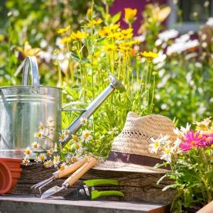 Jardiner, c'est pas sorcier - la preuve en 99 photos et conseils pour aménager son jardin comme un pro