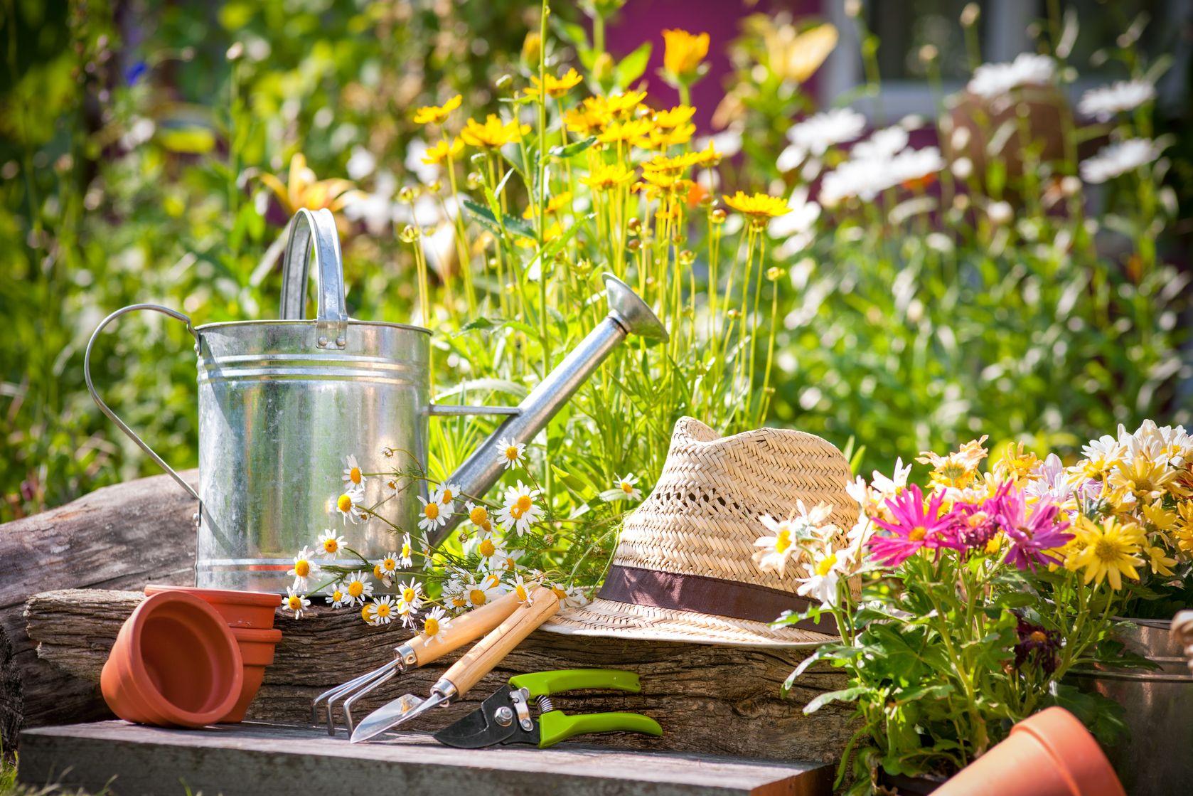 prendre soin, cultiver, arroser, tailler les plantes, les fleurs, les arbres et les arbustes, idée que faire pour aménager son jardin