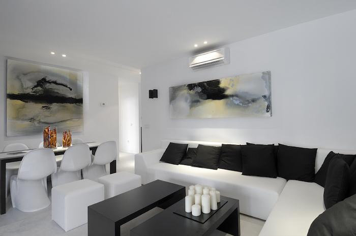 séjour sobre et minimaliste avec deco design noir et blanc