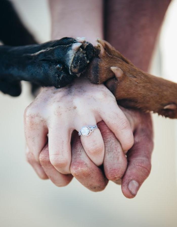 une photo originale qui célèbre l'amour et l'amitié entre homme et chien