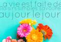 Améliorez votre humeur avec une citation sur la vie. 60 photos en couleurs