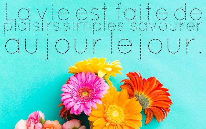 belle phrase, papier peint de bureau bleu, bouquet de fleurs orange et rose, citation inspirante sur la vie