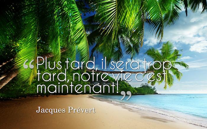 belle phrase sur la vie, photo nature exotique, océan turquoise et sable doré, palmiers sur le plage