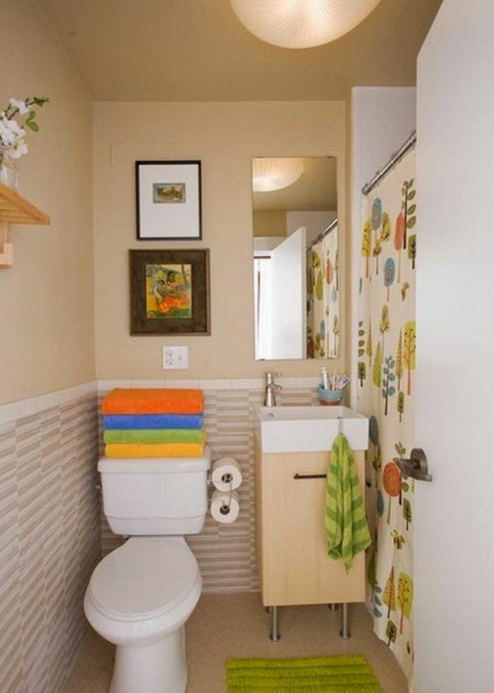 petite salle de bains aux couleurs et aux motifs joyeux avec des tableaux miniatures