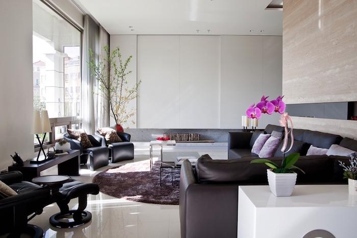idée aménagement salons design avec meubles et canapés modernes
