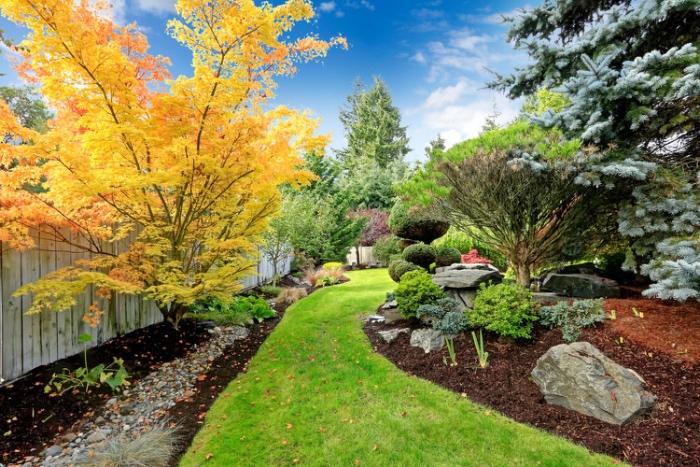 amenagement jardin, un chemin en gazon, plusieurs fleurs, arbustes et arbres, rivière de pierres, cadre anturel